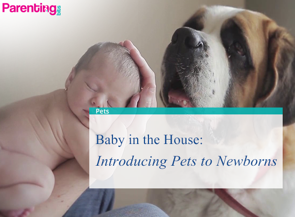 Baby-in-the-House--Introducing-Pets-to-Newborns